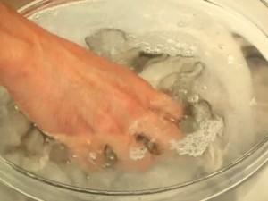 牡蠣のクリームシチュー