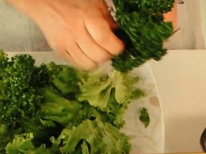 ちぎり野菜とスモークサーモンの サラダ トマトハニードレッシング