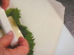 チーズ春巻弁当