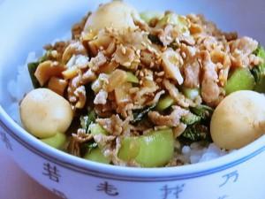 台湾風豚丼
