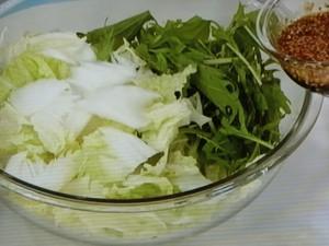 白菜のコッチョリ(即席漬け)