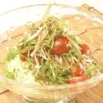 夏野菜のそうめんサラダ